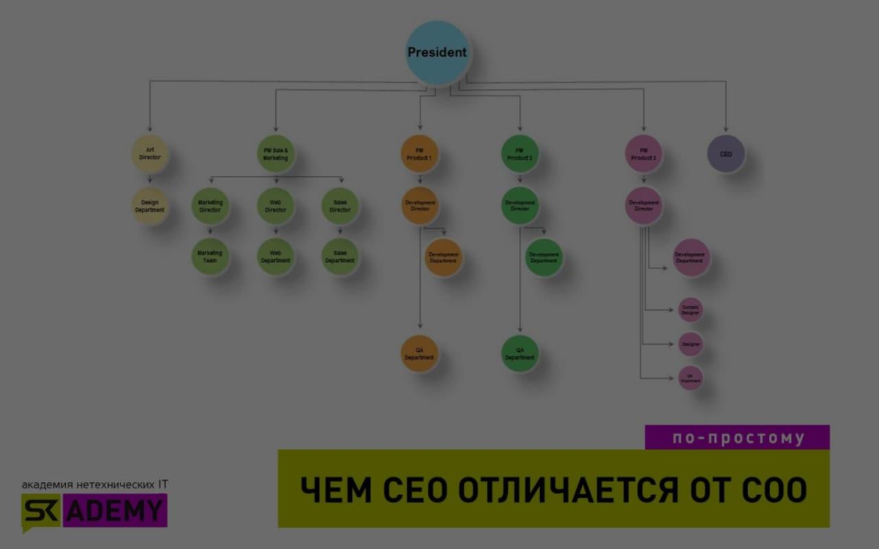 CEO (Chief Executive Officer)  — генеральный директор в IT-компании
